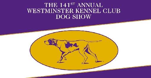 dog-show-nyc-2-7014972-regular