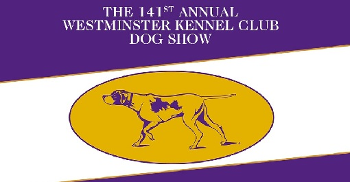 dog-show-nyc-2-7014972-regular